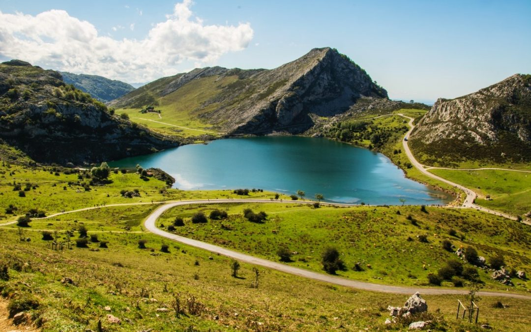 Los mejores sitios para comer buena carne de vacuno en Asturias